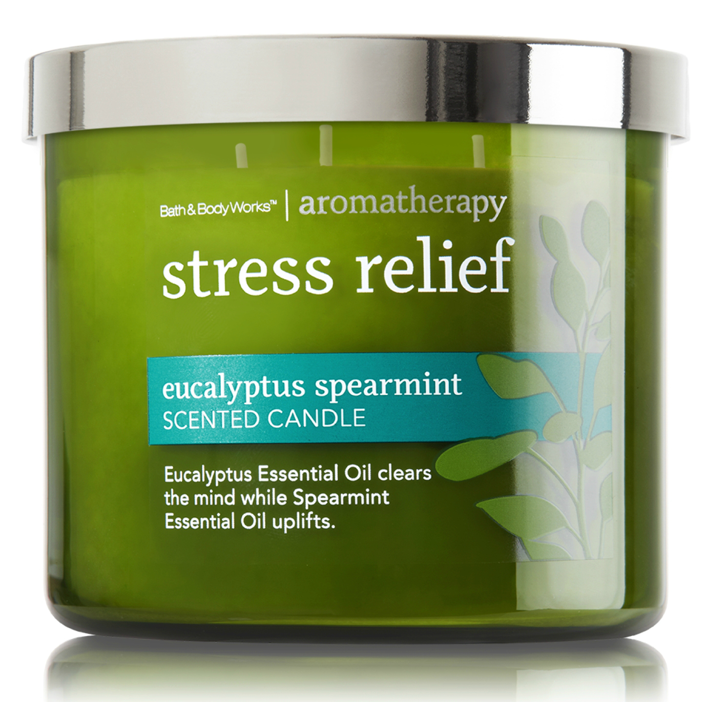 Bath and Body Works Eucalyptus Spearmint Candle